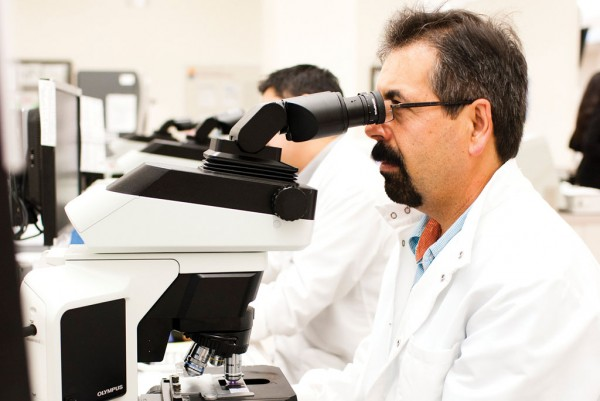 Scientist in the lab looking into the microscope