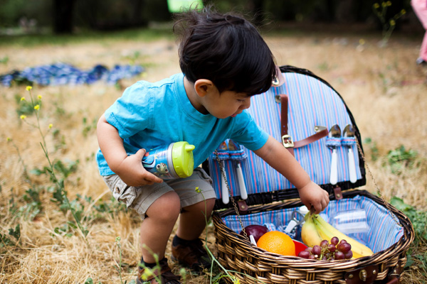 Young toddler boy reaching into picnic basket