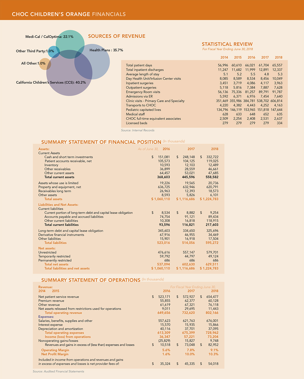 Annual Report Financials
