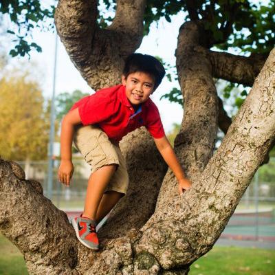 Boy climbing a tre3